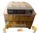 Jual Mesin Penetas Telur 96 Butir Otomatis – AGR-YZ96 di Jakarta