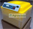 Jual Mesin Penetas Telur Otomatis 48 Butir – AGR-YZ48 di Jakarta